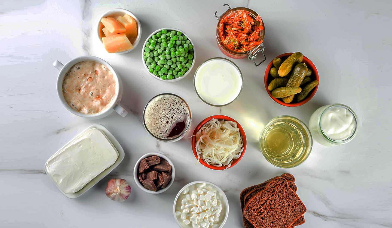 Exemplos de alimentos probióticos