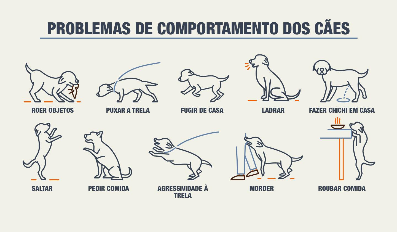 Problemas de comportamento dos cães